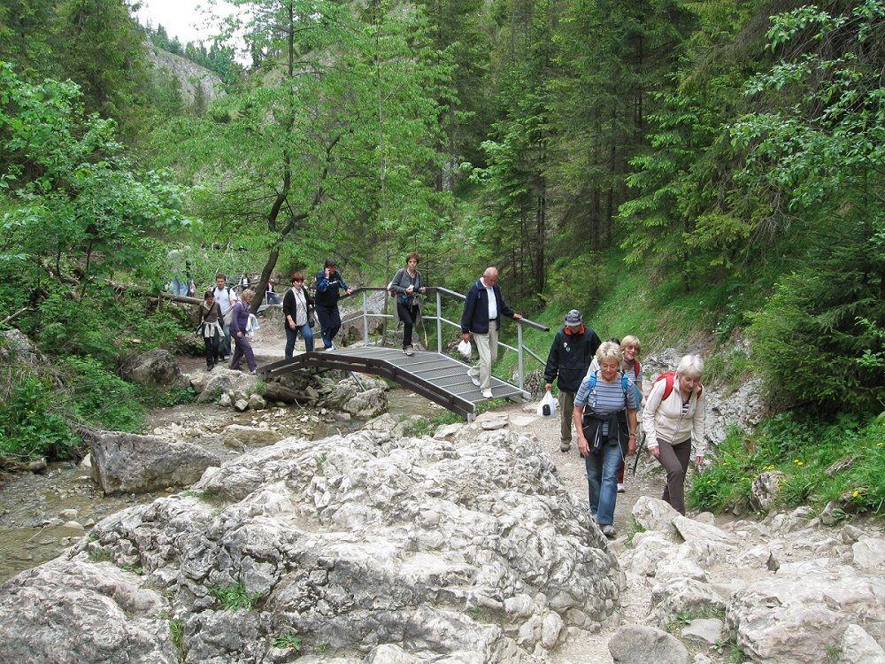 Wolne miejsca na wyjazd w Pieniny