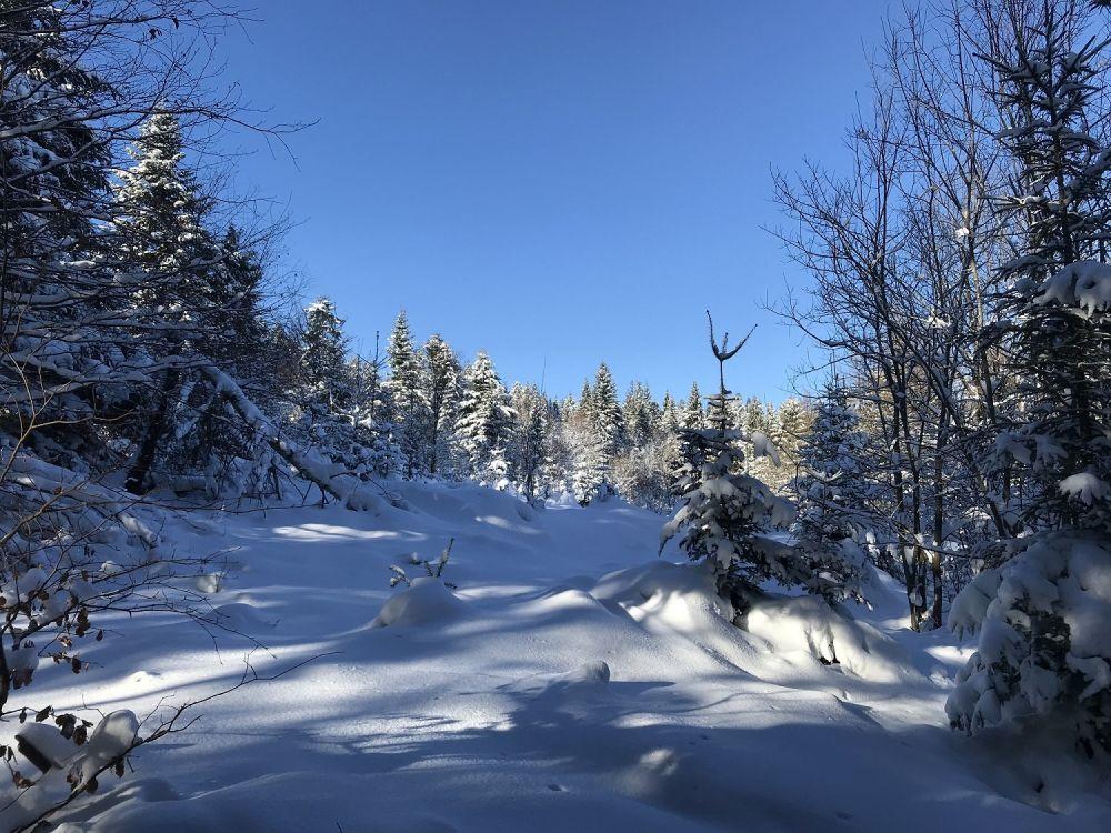 Zapraszamy na zimową wycieczkę w góry