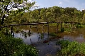 Zapraszamy na wakacyjny spływ kajakowy po Jurze