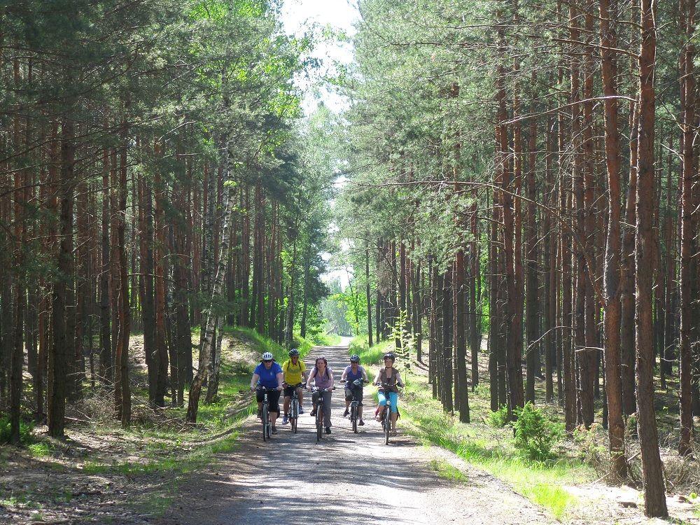 Rowerami do Ossowa i Kobyłki