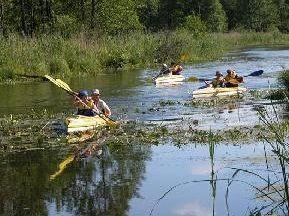 Spływ kajakowy rzeką Supraśl