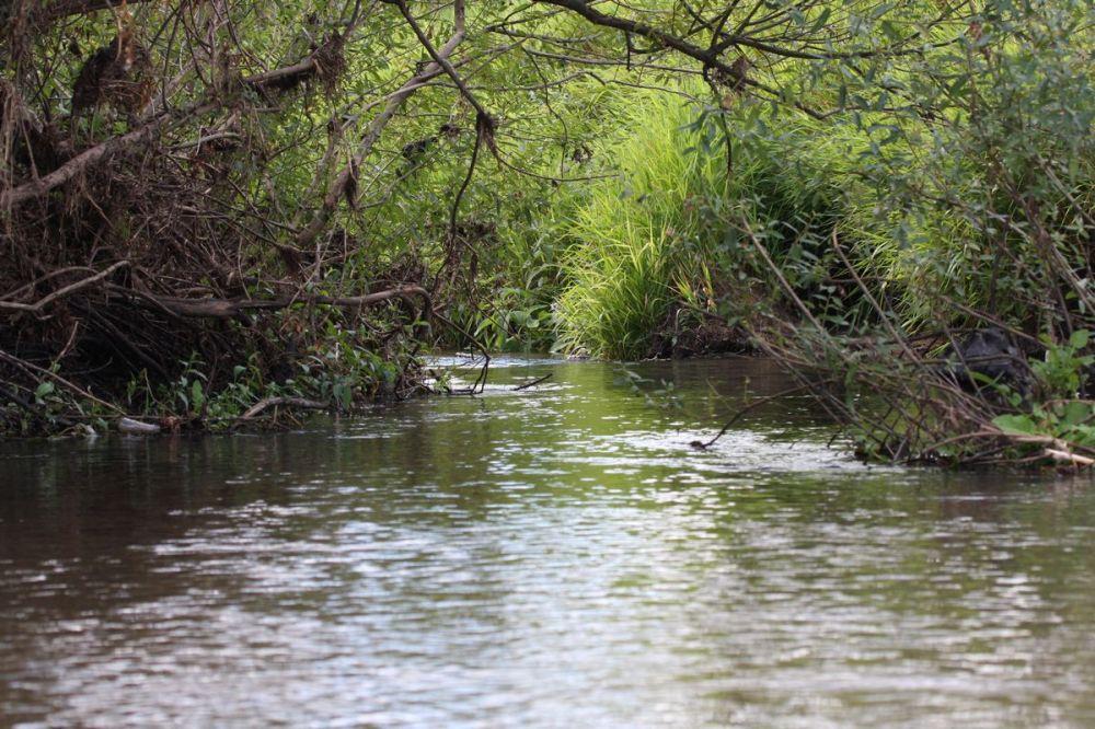Spływ Wilgą