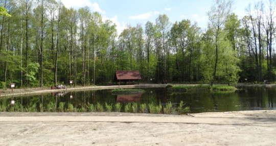 Wędrówka po Mazowieckim Parku Krajobrazowym